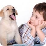 ребёнок обижает животных